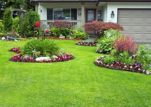 Landscaping And Maintenance Services